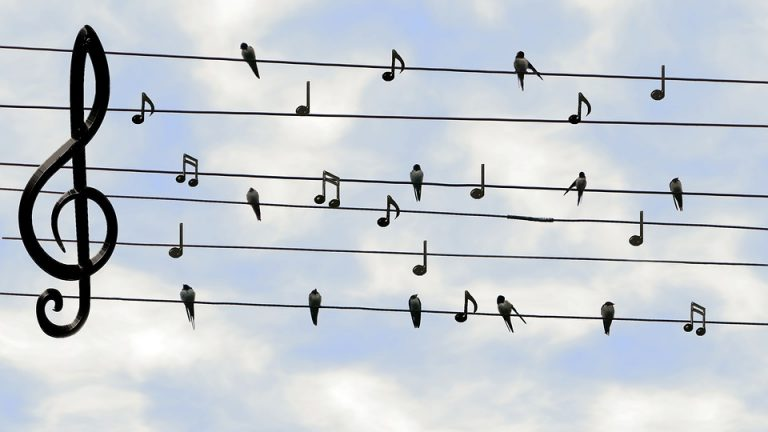 How To Read Music Notes For Singing